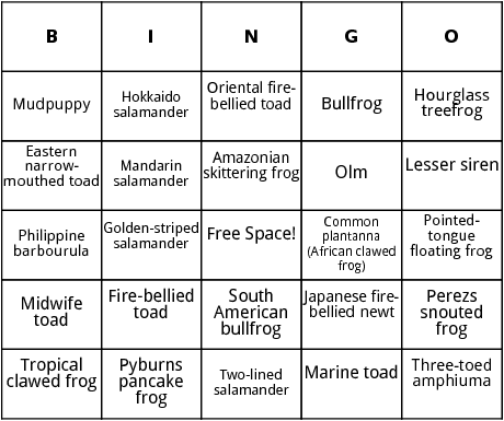 amphibians in lakes and ponds bingo