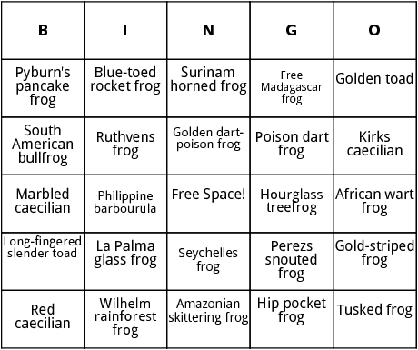 amphibians in rainforests bingo
