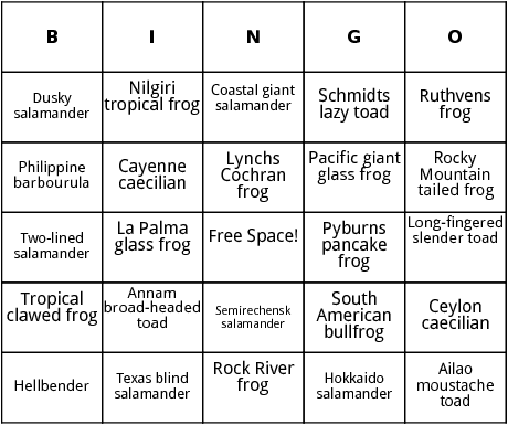 amphibians in rivers and streams bingo