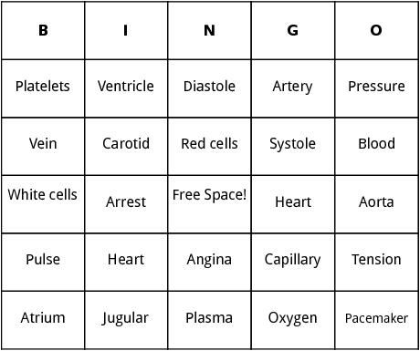 cardiovascular system bingo