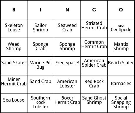 crustaceans bingo