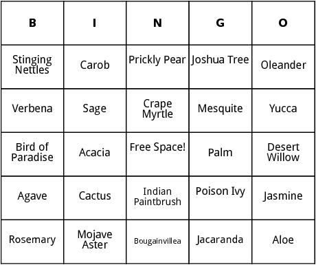 Desert Plants bingo by Bingo Card Template