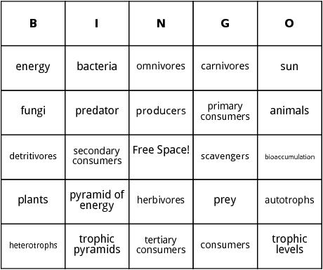 food chain bingo