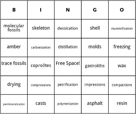 fossils bingo