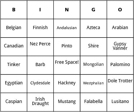horse breeds bingo