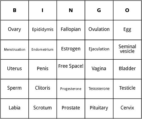 human reproduction bingo