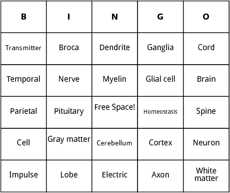 nervous system bingo