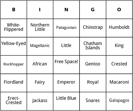 penguins bingo