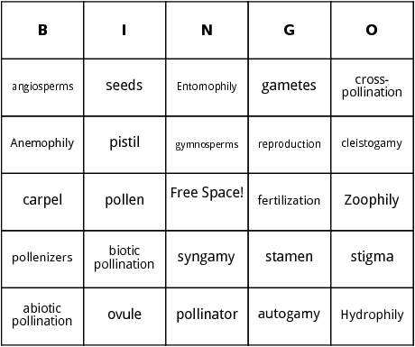 pollination bingo